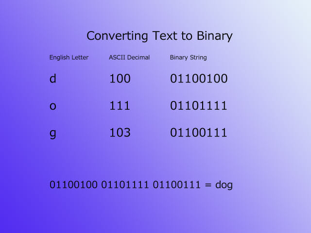 "Text to binary ""dog"""